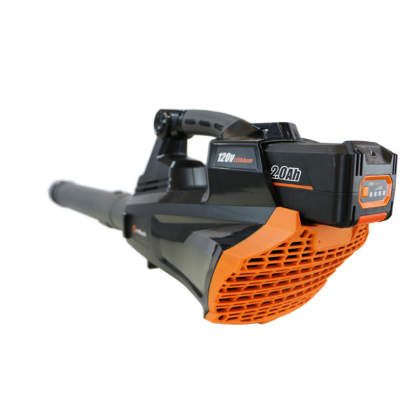 Cordless Electric Leaf Blower